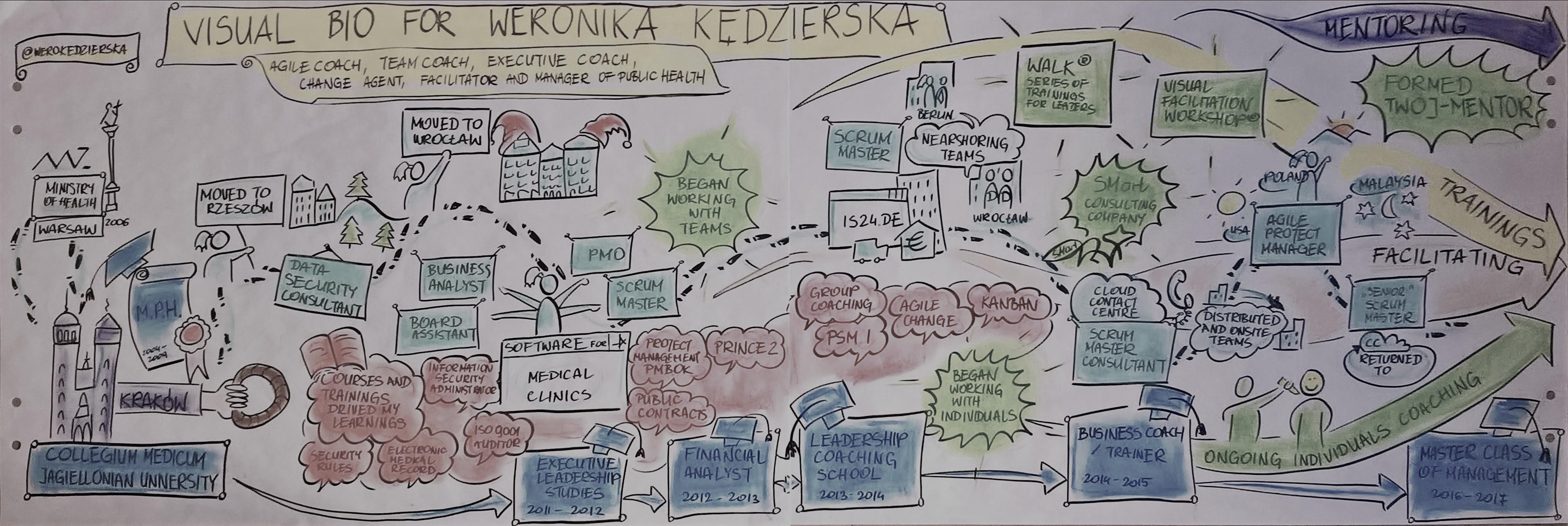 visualbio_werokedzierska_slate